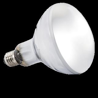 Obrázok pre kategóriu zářivky, žárovky